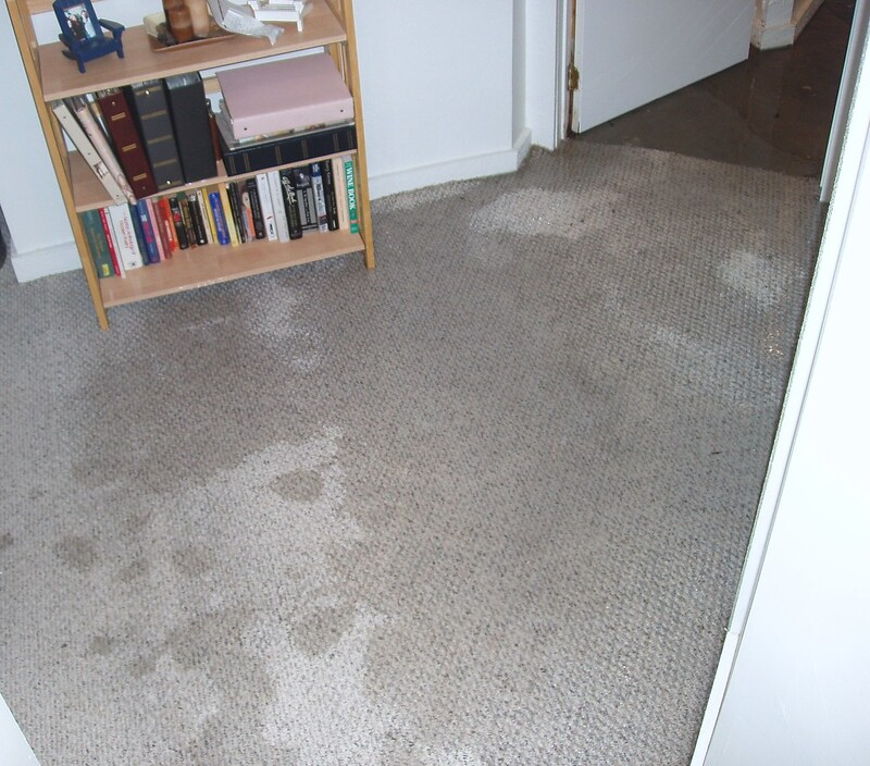 4 Causes of Water Damage in Your Home