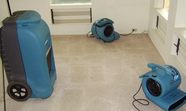 3 FAQs Regarding Our Expert Water Damage Cleanup Services